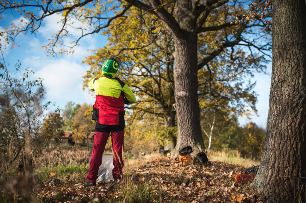 Streamlining Accounting For The Arboricultural Association